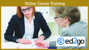 Online Career Training: Picture of two professionals at table.